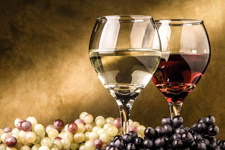 legislazione sui vini italiani